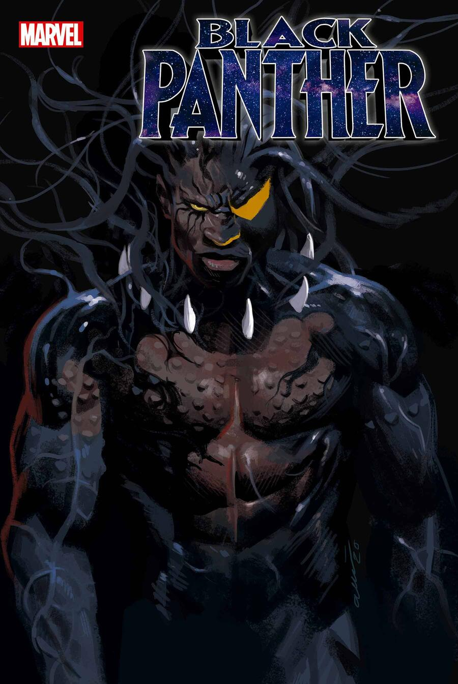 BLACK PANTHER #23 cover by Daniel Acuña