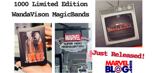 Limited Edition WandaVision MagicBands