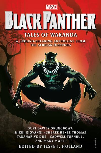 Black Panther: Tales of Wakanda